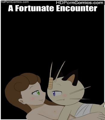 Porn Comics - A Fortunate Encounter Sex Comic