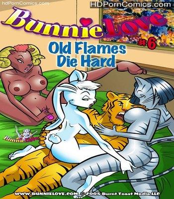 Porn Comics - Bunnie Love 6 Sex Comic