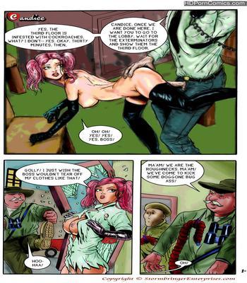 Porn Comics - Erotic Adventures of Candice 01-18 free Cartoon Porn Comic