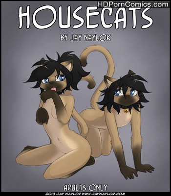 Porn Comics - Housecats Sex Comic