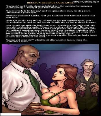 Interracial - Reunion Revenge Goes Awry12 free sex comic