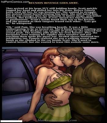 Interracial - Reunion Revenge Goes Awry14 free sex comic