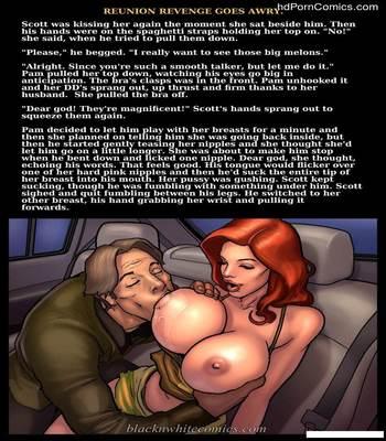 Interracial – Reunion Revenge Goes Awry free Porn Comic sex 15