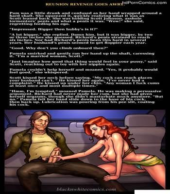 Interracial - Reunion Revenge Goes Awry16 free sex comic
