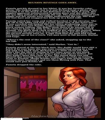 Interracial – Reunion Revenge Goes Awry free Porn Comic sex 23