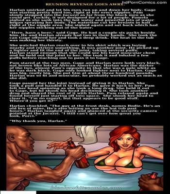 Interracial - Reunion Revenge Goes Awry24 free sex comic