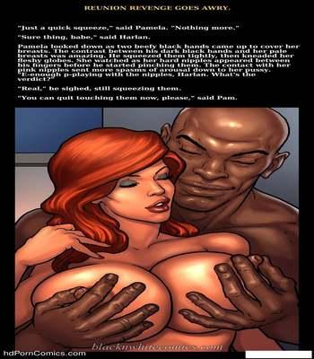Interracial - Reunion Revenge Goes Awry27 free sex comic