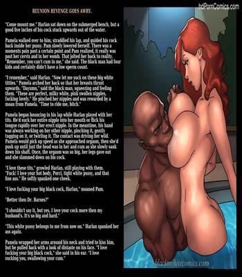 Interracial - Reunion Revenge Goes Awry40 free sex comic