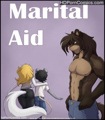 Porn Comics - Marital Aid Sex Comic