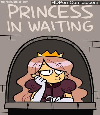Porn Comics - Princess In Waiting Sex Comic