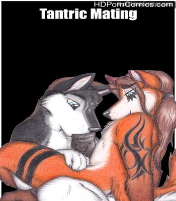 Porn Comics - Tantric Mating Sex Comic