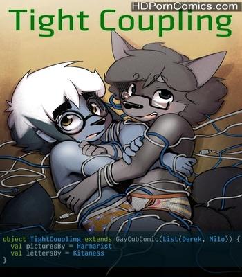 Porn Comics - Tight Coupling Sex Comic