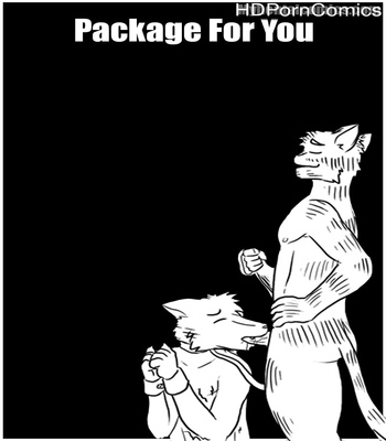 Porn Comics - Package For You