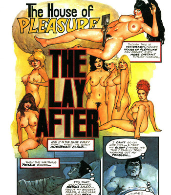 Porn Comics - The House Of Pleasure – The Lay After