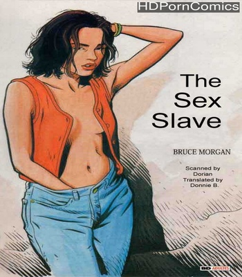 Porn Comics - The Sex Slave