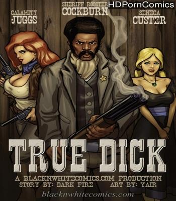 Porn Comics - True Dick