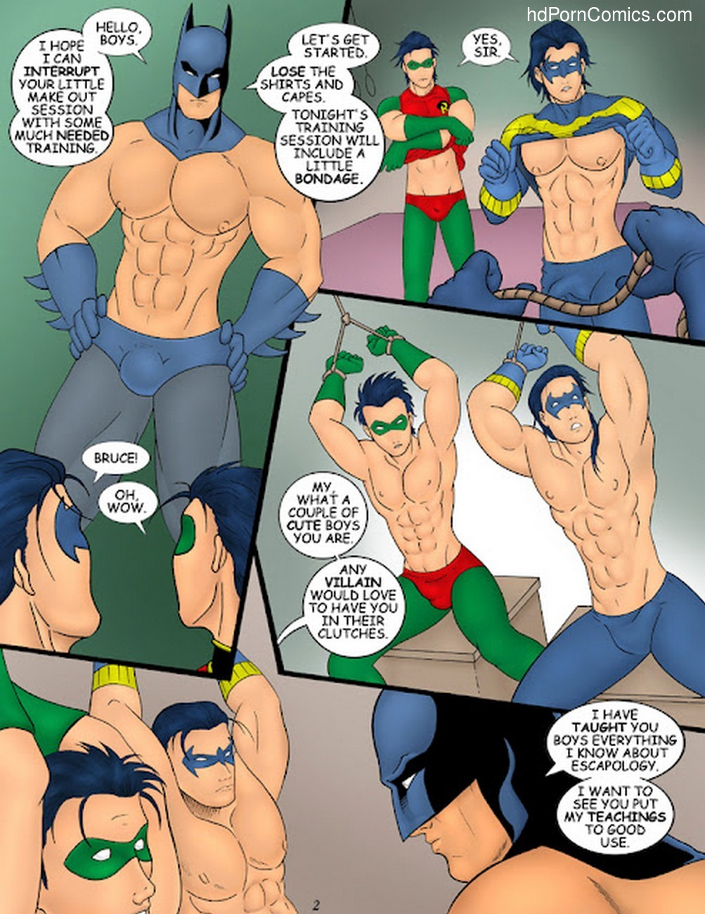 Batman Robin Sex