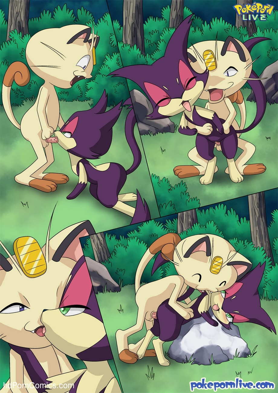 The Cat's Meowth 16 free sex comic