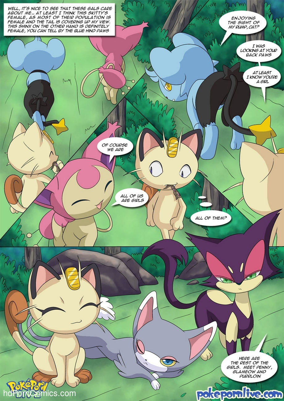 The Cat's Meowth 6 free sex comic